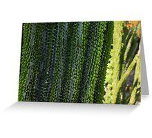 Strange Plantlife - Cactus Garden Barcelona Greeting Card