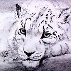 Watchful Snow Leopard by nonny