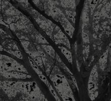 """Life Tree 6"" Sticker"