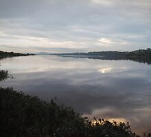 River Foyle, Autumn evening by Sarah Cowan