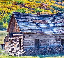 Rocky Mountain Rural Rustic Cabin Autumn View by Bo Insogna