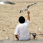 Feeding the Gulls by bidkev1