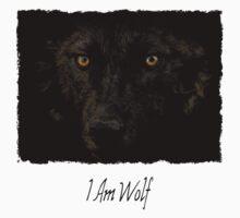 Midnights Gaze - Black Wolf Wild Animal Wildlife by Val  Brackenridge
