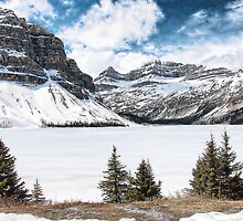 Bow Lake - Banff National Park  by Dyle Warren