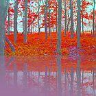 Lavender by Ann Eldridge