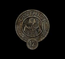 District 12 Seal by dellycartwright