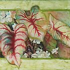 Caladiums 2 by Deborah Younglao