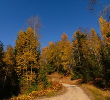 Mountain Road by RevelstokeImage