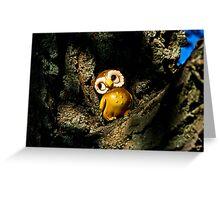 Harvey the Owl I Greeting Card