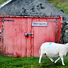 Keep clear - boat shed at Staffin, Skye by Richard Flint