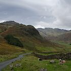 Langdale Panorama by Mike Church