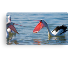 Pelicans & Married Life Canvas Print