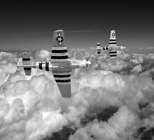 P-51s black and white version by Gary Eason + Flight Artworks