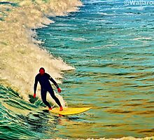 Malibu Rider by wallarooimages