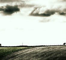 Fence, Trees and Clouds by Ms-Bexy