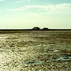 burned out farmhouse on the shore of a dried-up lake by borjoz