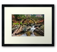 The old stone bridge of Tsagarada Framed Print