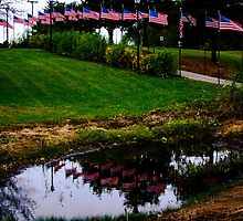 Flags For The Fallen by Tina Hailey