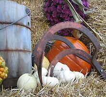 Cultivator and Gourds by PicsbyJody
