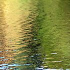 Summer to Fall ripples by CcoatesPhotos