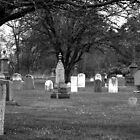 Black's Cemetery by Elisabeth and Barry King™ by BE2gether