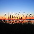 Sunset in Crescent Beach, BC, CAN by ravenartistry