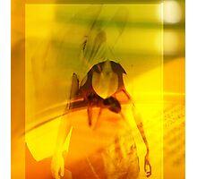 Spider, 2008 Photographic Print
