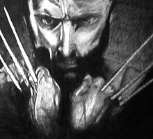 The wolverine by Emmiesart