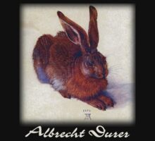 Albrecht Durer - Field Hare by William Martin