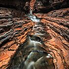 Hancock Gorge by Mieke Boynton