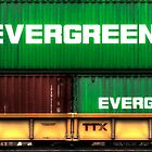 Evergreen State by Sue Morgan