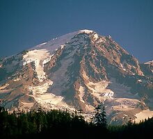 Mount Rainier from Longmire, Washington State by Vern Treat