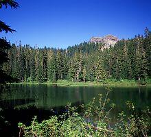 View From Lake Christine, Mount Rainier National Park, Washington by Vern Treat