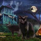 Halloween Cats by aura2000