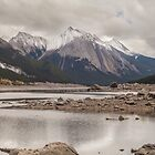 Medicine Lake by Ron Finkel
