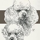 Poodle Father & Son (miniature) by BarbBarcikKeith