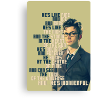 David Tennant - He's wonderful Canvas Print