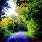 Autumn Lane by mikebov