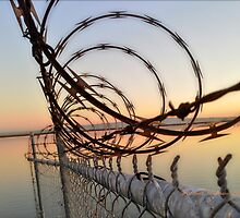 Sunrise and Razor Wire over Jogel Slough (Government Shutdown) by Jennifer Hartnett-Henderson