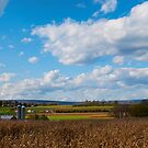 Farm In Lewisburg PA by Penny Rinker