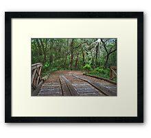 Wooden Bridge 1 Framed Print