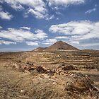 Lanzarote landscape by Judi Lion