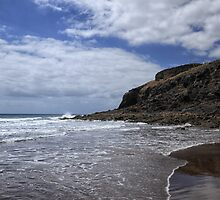 Beach on Lanzarote by Judi Lion