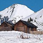 Huts on the hillside in La Rosière, Savoie by Judi Lion