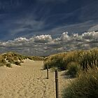 Sand Dunes at East Head by Judi Lion