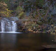 Brandy Creek Falls by RubenGarciaJr