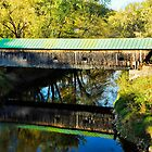Hammond Covered Bridge by Julie Everhart