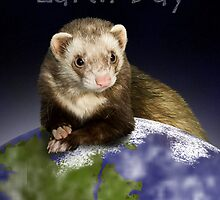 Earth Day Ferret by jkartlife