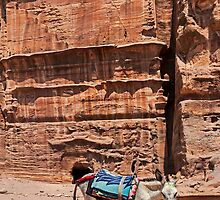 Poor Donkey at Petra. by bulljup