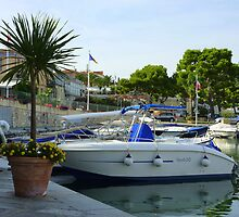 Saint-Jean-Cap-Ferrat by Fara